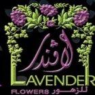 Lavender Flowrs