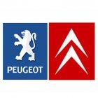 Al Basel for Peugeot & Citroen