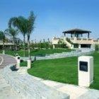 Palm Hills Club