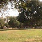 Al Diffe Park