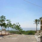 ثارا البحر الميت