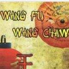 Wang Fu