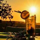The Lemon Tree & Co