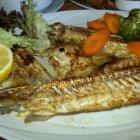 المحيط للمأكولات اللبنانية