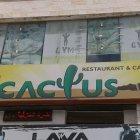 مطعم وكافيه كاكتوس