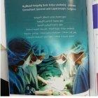 الدكتور ابراهيم شوباش/ اخصائي الجراحة العامة والجراحة بالمنظار.