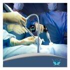 الدكتور عمر الزين