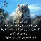 Al Romansiah