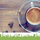 Jungle Fever Coffee and Tea House