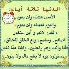 د. محمد السيد هاشم