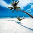 سيناميس للسياحة والسفر