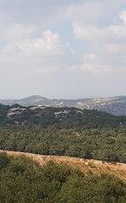 Obada