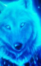 X Wolf