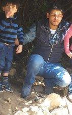 طارق جراد