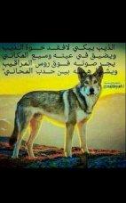 khalid al awdey