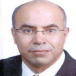 الدكتور موسى الحديدي