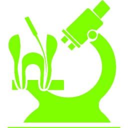 عيادة الدكتورة آلاء الزعبي لطب الاسنان