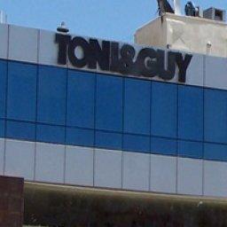 توني اند غاي