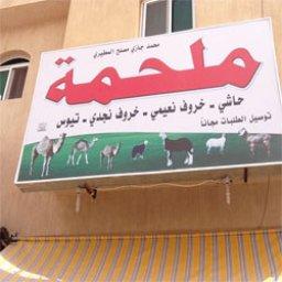 ملحمة محمد المطيري
