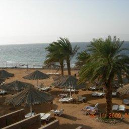 شاطئ الفندق
