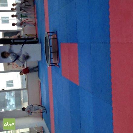 Okinawa Karate Academy