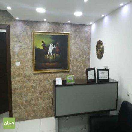 الدكتور علاء اليبرودي