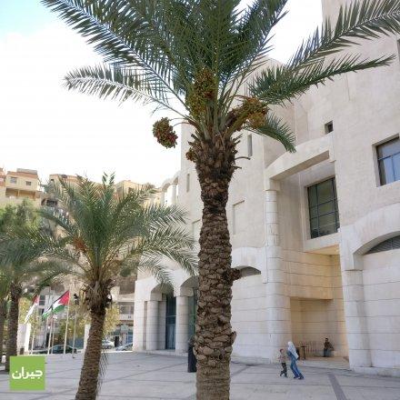 Greater Amman Municipality