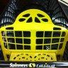عربة التسوق البلاستيكية  :: سبينس